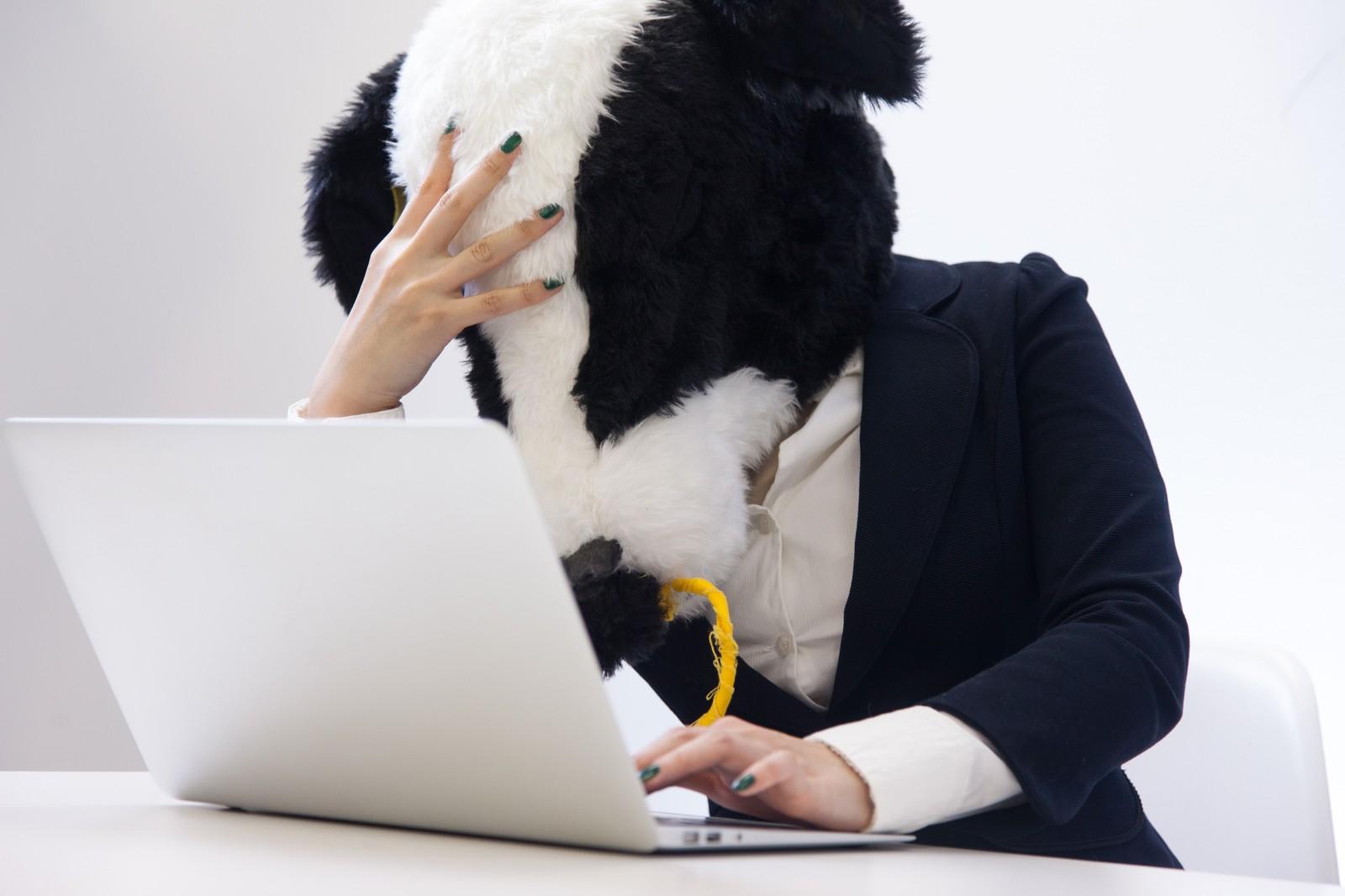 20代フリーターが厳しい就職率をネットで検索してしまった風景
